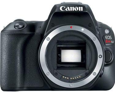 Canon/2249C001.jpg