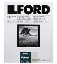 Ilford/1799178.jpg