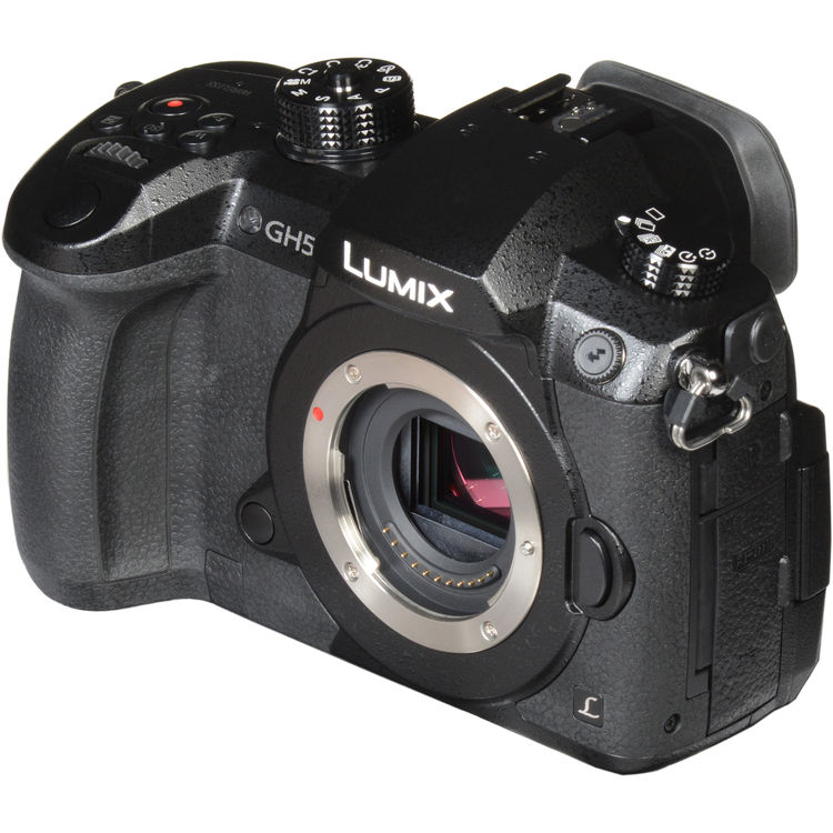 Panasonic Lumix DC-GH5 Micro Four-Thirds Camera (Body Only) at ...
